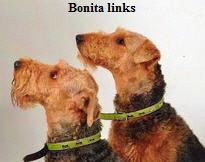 links-benotia